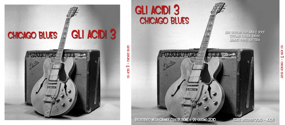 n004 gli acidi 3: chicago blues 2010